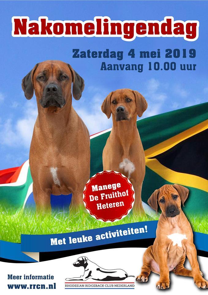 nakomelingen dag Rhodesian Ridgeback 2019